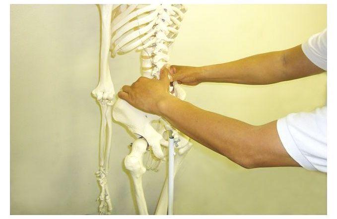 骨格 腰椎誇張法トップページ用 余白